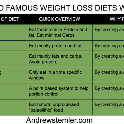how do famous diets work copy
