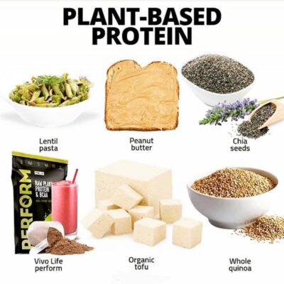 plant protein.png